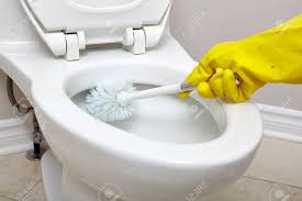 Flush Toilet Bowl Cleaning With A Brush In Bathroom. Stock Photo ...