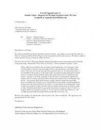 Appeal Letter Insurance Company Sample Template Health Medical