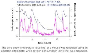 Check The Body Temperature Wilsons Syndrome