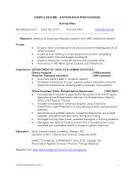 Cosy Professional Resume Formatting Also Financial Service