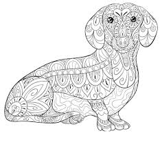 Dachshund Coloring Pages Weird Mssrainbows Sketch Free Printable