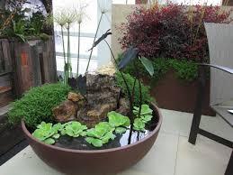 1663 Best Container Gardening Ideas Images On Pinterest Container Garden Design Plans