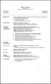 Microsoft Word 2007 Resume Template Business Template