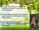 Save tiger essay 100 words