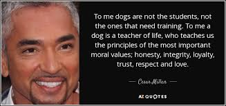 Dog Quotes Love And Loyalty Unique TOP 48 QUOTES BY CESAR MILLAN Of 48 AZ Quotes