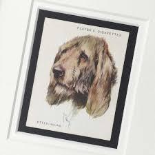 otterhound vine gifts the enlightened hound