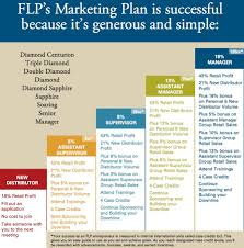 Business Plan Template Network Marketing Executive Resume For