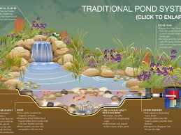 Small Picture Ideas 8 Stunning Backyard Pond Ideas Things To Consider For