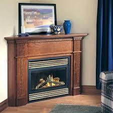 napoleon gas fireplace alternative views napoleon gas fireplace insert gi3600