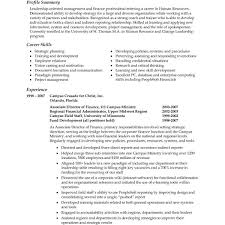 Professional Summary Resume Adorable Good Professional Summary For Resume Goalgoodwinmetalsco