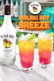 Mad hatter martinithe spring mount six pack. Malibu Rum Maliburum Profile Pinterest