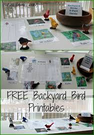 Observing Learning Backyard Birds With Free Printables