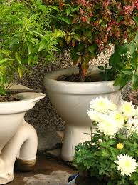 porcelain planters seem to be quite popular in some gardens