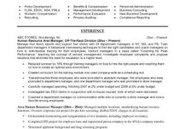Free Resume Template Download Microsoft Word New Resume Templates ...