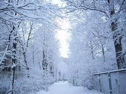 Картинки по запросу снег идет