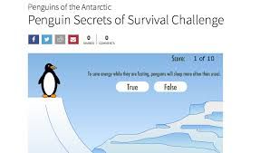penguins of the antarctic about nature pbs penguin secrets of survival challenge
