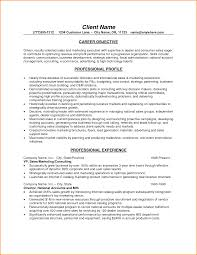 9 Business Resume Objective Skills Based Resume