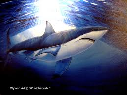best images about the art of wyland tropical art 17 best images about the art of wyland tropical art ocean life and dolphins