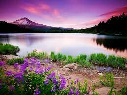 Beautiful View Wallpapers - Top Free ...