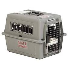 Pet Porter Size Chart Petmate Sky Kennel Airline Approved Pet Kennel Pet Crates