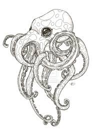 Small Picture 19 best octopus images on Pinterest Octopuses Animals and Drawings