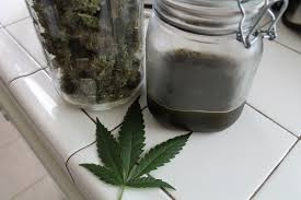 where can i buy cannabis tincture