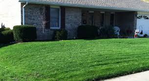 lawn care cincinnati. Fine Cincinnati Cincinnati Lawn Care PureLawn Organic Lawncare On C