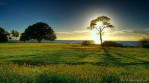 beautiful nature hd wallpaper free ...