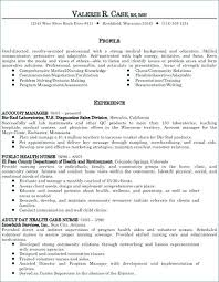 Resume Summary Or Objective Best of Summary Statement Resume Examples Healthcare Resume Example Examples