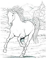 Coloring Picture Of A Horse Horse Colouring Book Horse Coloring