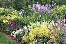 summer perennial garden bed