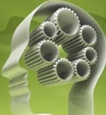 Организационно правовые формы предпринимательской деятельности и  032014 0417 1 Организационно правовые формы предпринимательской деятельности и порядок их образования