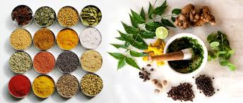 Image result for images of ayurvedic herbals