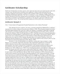 example essays application letter sample grant letter resume  example