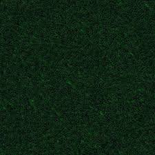 Dark Green Carpet Texture Decorating Bedroom With