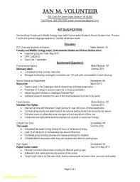 Work Experience Sample Resume Work Experience Resume Format Resume ...
