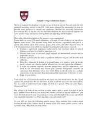 Essays For College Examples Academic Essay Essays About High School