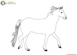 Paard Tekenen Kind Kleurplaat Kleurplaat Voor Kinderen