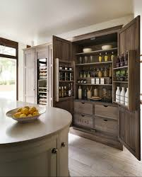 Modern Kitchen Pantry Designs Cabinets Storages Oak Wooden Stylish Kitchen Pantry Remodel