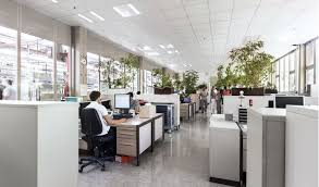 lighting in an office. bosch lighting in an office e