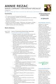 Partner Resume Samples Visualcv Resume Samples Database