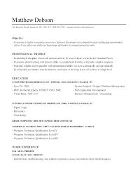 Templates For Writing A Critique Essay Outline Ordinary Resume