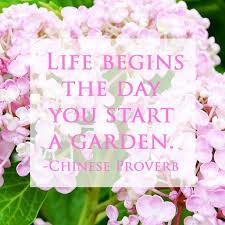 garden es starting a garden