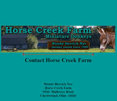 Horse Creek Farm Miniature Donkeys – Miniature Donkey Breeders Listing