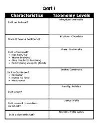 Scientific Classification Of Living Things The 7 Levels Of Classification