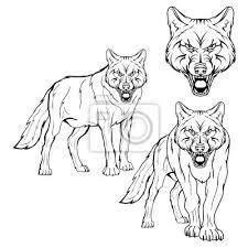 Fototapeta Wolf Set Vektorová Skica Vlka Obchodní Logo Loga Tváře Vlka