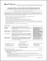 Technical Skills List For Resume Best 48 How To List Skills On A Resume Free Resume