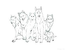 array cute baby wolf coloring pages arctic wolf coloring sheets head rh cannexus co