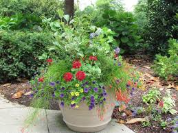 Four Container Planting Ideas For Autumn  Fine GardeningContainer Garden Ideas Uk