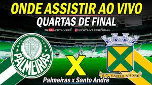 Paulistão: Palmeiras x Santo André ao vivo | Onde assistir ao jogo -  Quartas de Final - YouTube